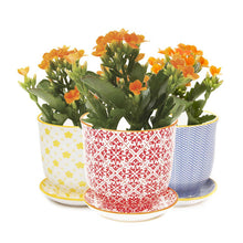 Liberte ceramic plant pot with drainage and saucer red trio