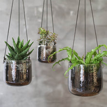 Viri Hanging Planter - Aged Silver - Large medium small plant