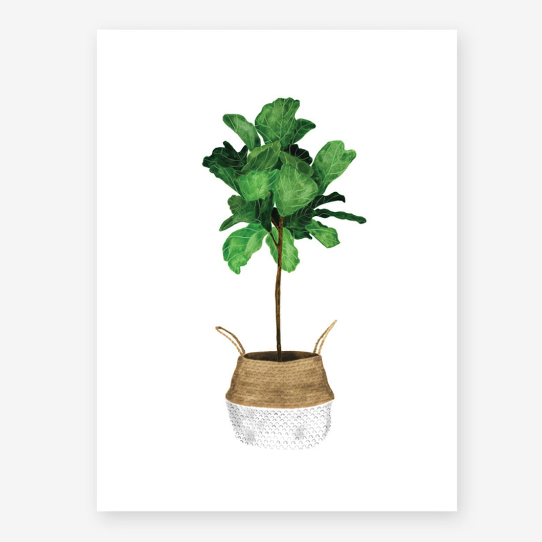 all the ways to say fiddle leaf fig tree print