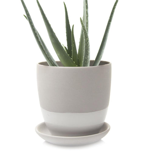 chive Big Dyad Planter and Saucer - light grey