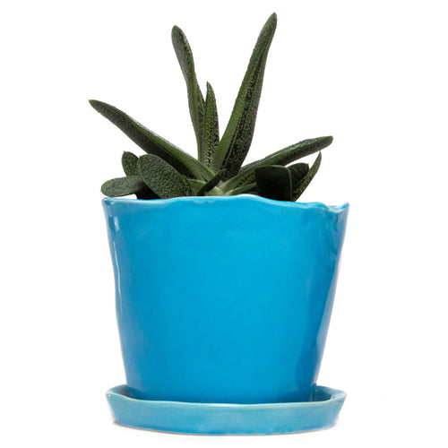 chive Big Tika Planter and Saucer - Azure Blue