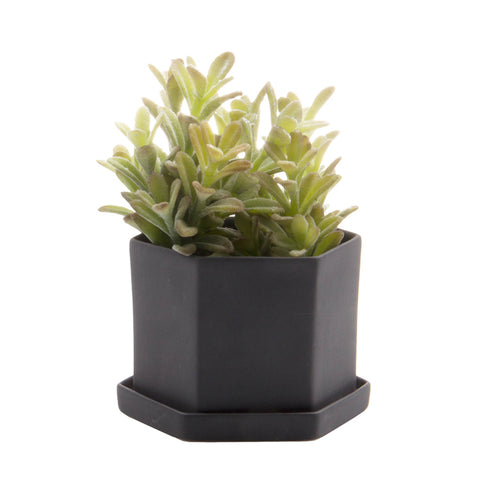 Chive - Hexi Pot and Saucer - Black