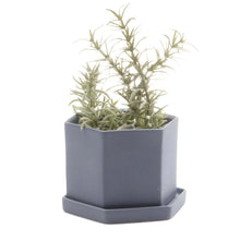 chive Hexi Planter and Saucer - blue grey