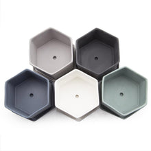 chive Hexi Planter and Saucer - hexagonal set top