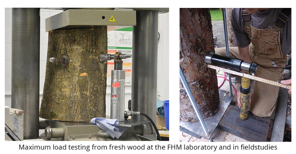 treehouse screw maximum load test - bachelor thesis FHM
