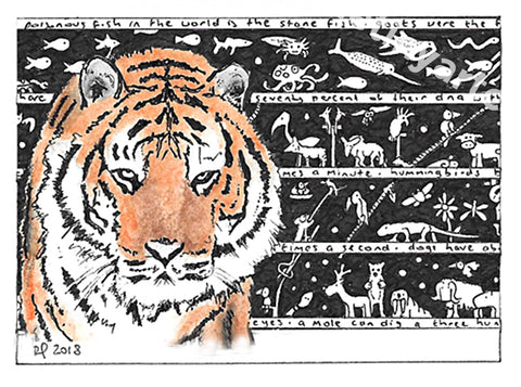 Tiger ACEO Print - The Tiny Art Co