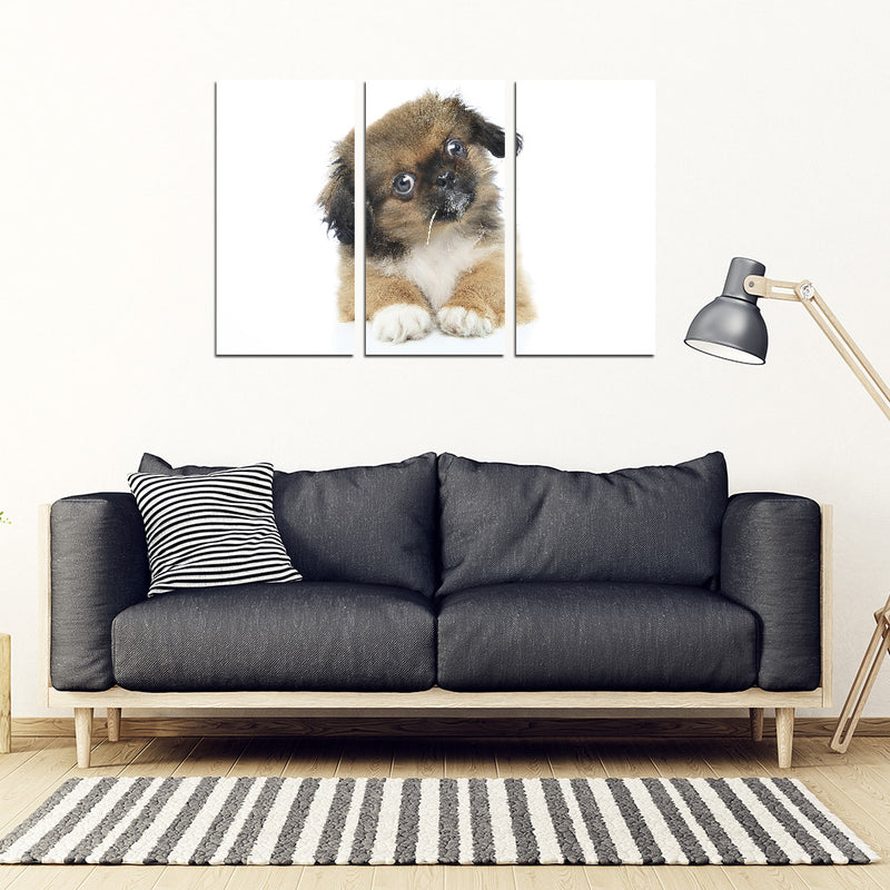 Custom made dog 3  Framed Canvas