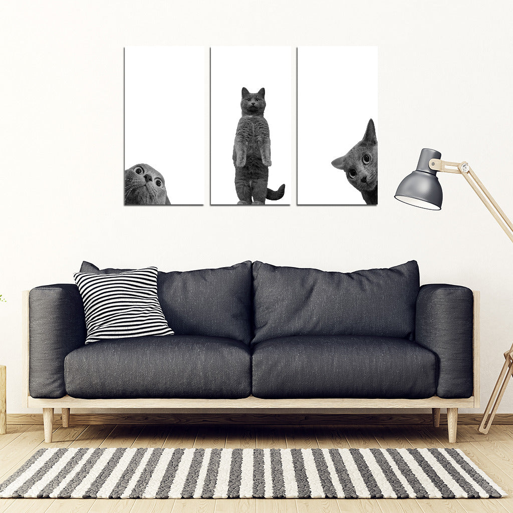 BLACK and WHITE Cat Wall Art