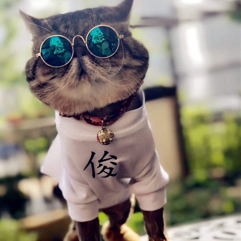 Cool Funny Glasses Small Pets