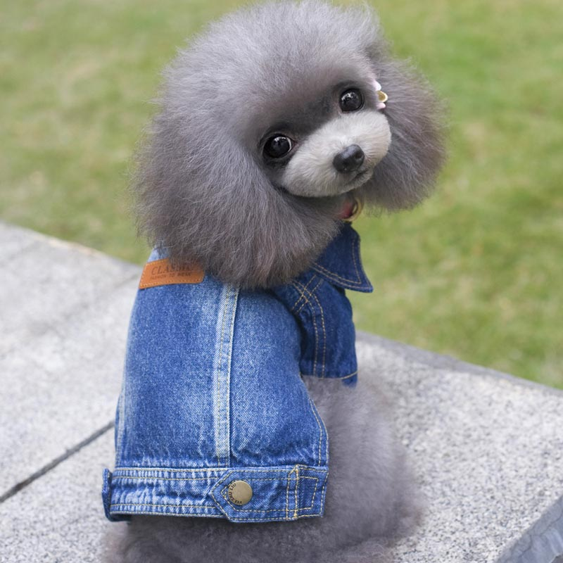 Cowboy Coat/Jacket for Pets Costume