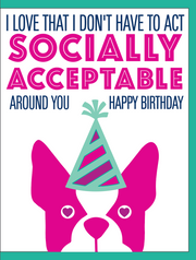 """Love That I Don't Have to Act Socially Acceptable / HBD"" - Greeting Card - $1.70 Each (GC45AP4009)"