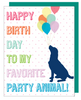 """Happy Birthday To My Favorite Party Animal"" Greeting Card with COLORED Envelope - $1.70 Each (GC45AP2036C)"