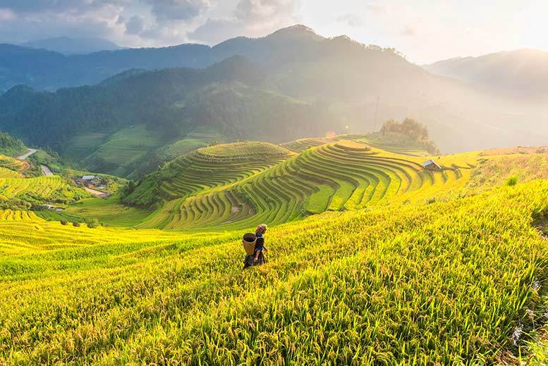 12-Day Vietnam Tour, Internal Flights, Train Transfers & Cruise fr €529pp