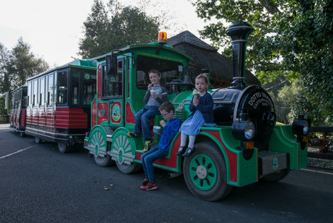 2 nights Family Getaway with Lullymore Heritage & Discovery Park