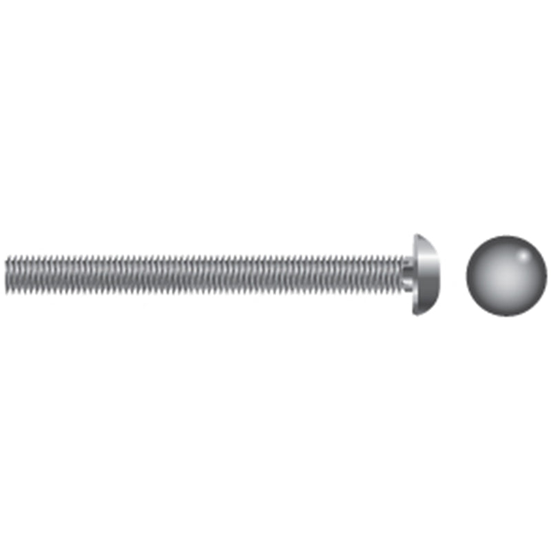 Papco Stainless Steel Cariage Bolts