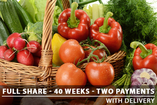 Full Share - 40 Weeks - Two Payments with Delivery