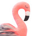 Coral and Flo the Flamingos