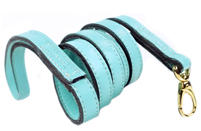 Italian Turquoise Leather & Gold Lead
