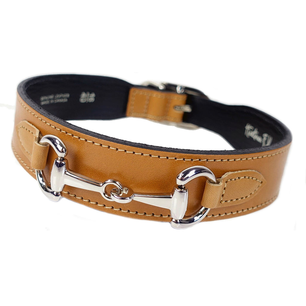 Belmont in Buckskin & Nickel Collar