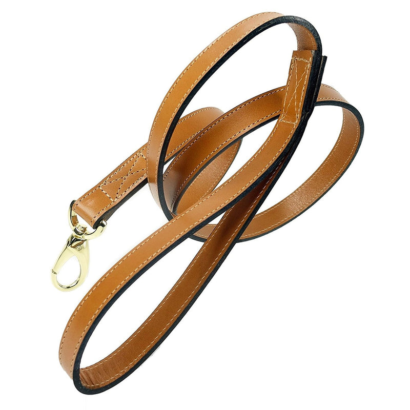 Italian Buckskin Leather & Gold Lead