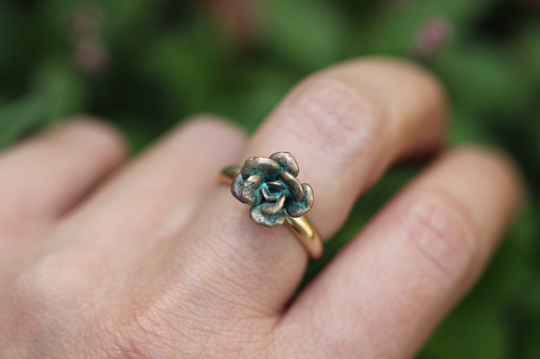 Bronze and 14k gold filled succulent ring 7.25