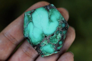 Destash Large natural Damele turquoise/variscite cabochon