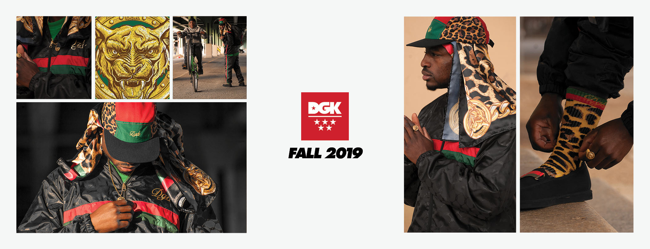 DGK Primo Fall 2019 Collection