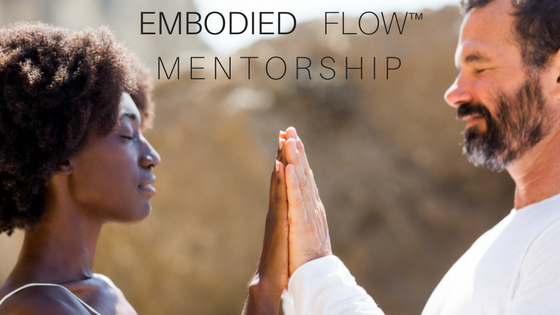 Embodied Flow Mentorship, Advanced (300)