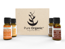 Holiday Spice Essential Oil Gift Set (4 - 15 ml bottles)