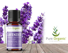 Lavender Pure Essential Oil 15 mL by Pure Organic Ingredients, Promotes Restful Sleep, Calming Aroma, Pure, Undiluted, No Additives