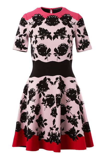 Alexander McQueen, A-Line Rose Printed Dress