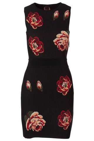 , Rose Tapestry Mini Knit Dress