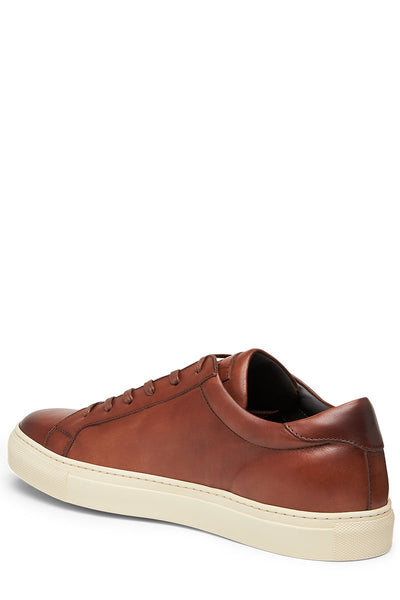 Knox Leather Sneakers