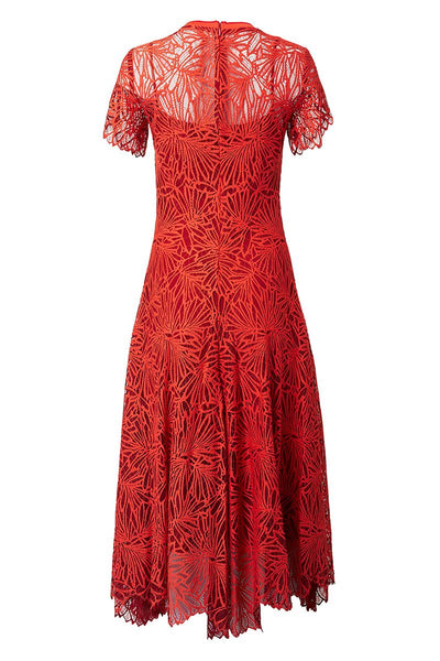 Proenza Schouler, Lace Midi Dress