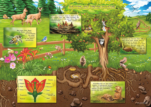 Plant Structures and Animal Behaviors Jigsaw Puzzle