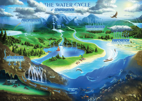 The Water Cycle Jigsaw Puzzle