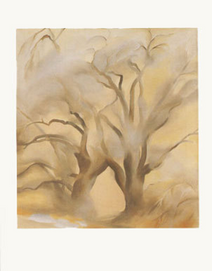 Winter Cottonwoods - Notecards