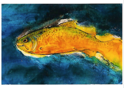 Trout Night Swimmer
