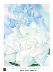 White Rose with Larkspur #2