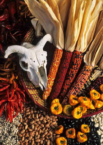 Chile, Corn, and Beans with Skull- notecard