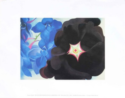 Black Hollyhock Blue Larkspur, 1930 - Notecard
