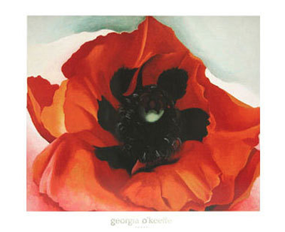 Red Poppy, No. V