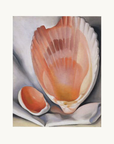 Two Pink Shells - notecard