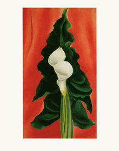 Calla Lilies on Red - Notecard
