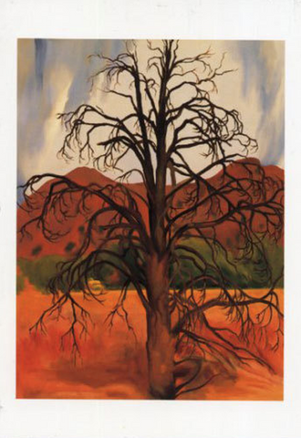 Dead Piñon Tree - Notecard