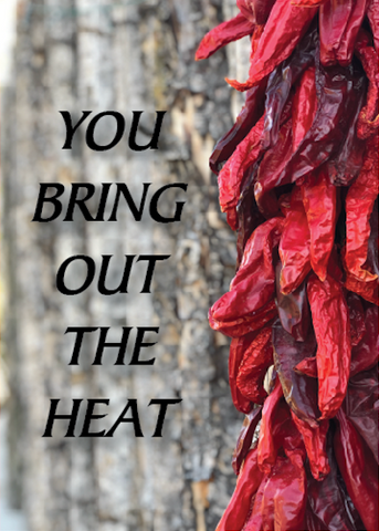 Valentines - You Bring out the Heat