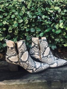 Side Zip Snakeskin Booties