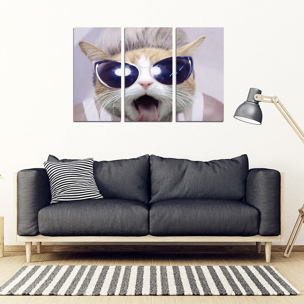 Cool Cat Framed Canvas