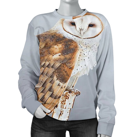 Women Gray Barn Owl Sweater