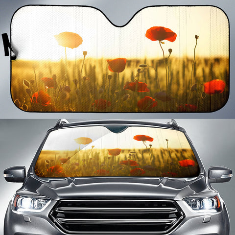 Beautiful Sunlight Auto Sun Shade
